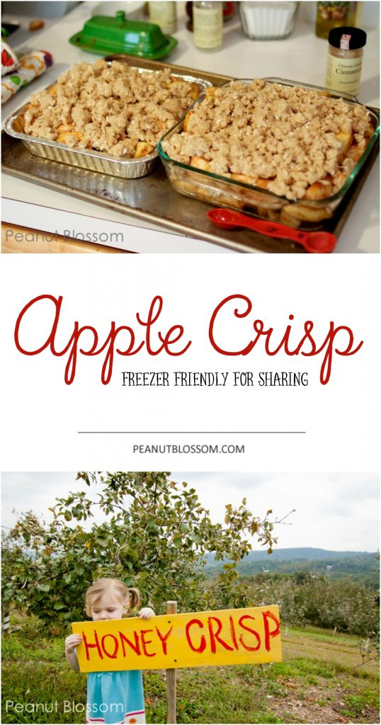 This easy apple crisp recipe is freezer friendly and perfect for fall baking.
