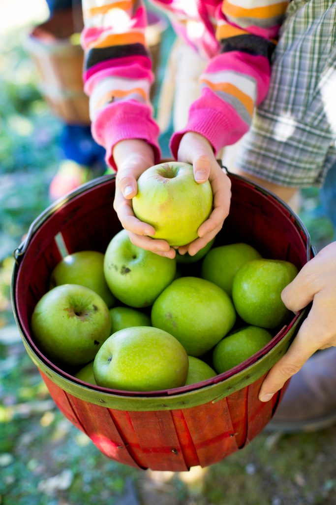 Good apples for baking apple crisp include Granny Smith, Mcintosh, and Honeycrisp