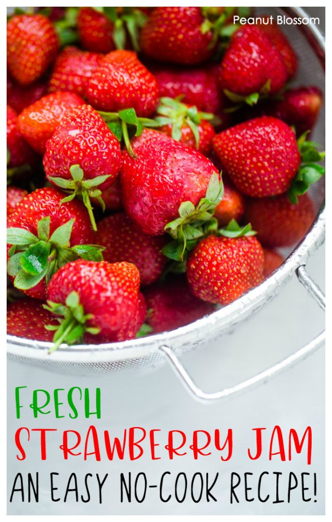 Fresh strawberry freezer jam: an easy, no-cook jam recipe for beginners.