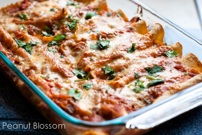 Chicken enchiladas recipe | Peanut Blossom