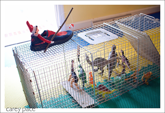 Elf on the Shelf has trapped toy dinosaurs in a real animal cage and is fishing for them with a pole.