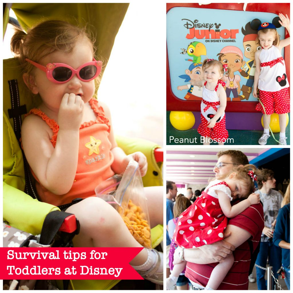 Parents' Guide to Surviving a Toddler at Disney