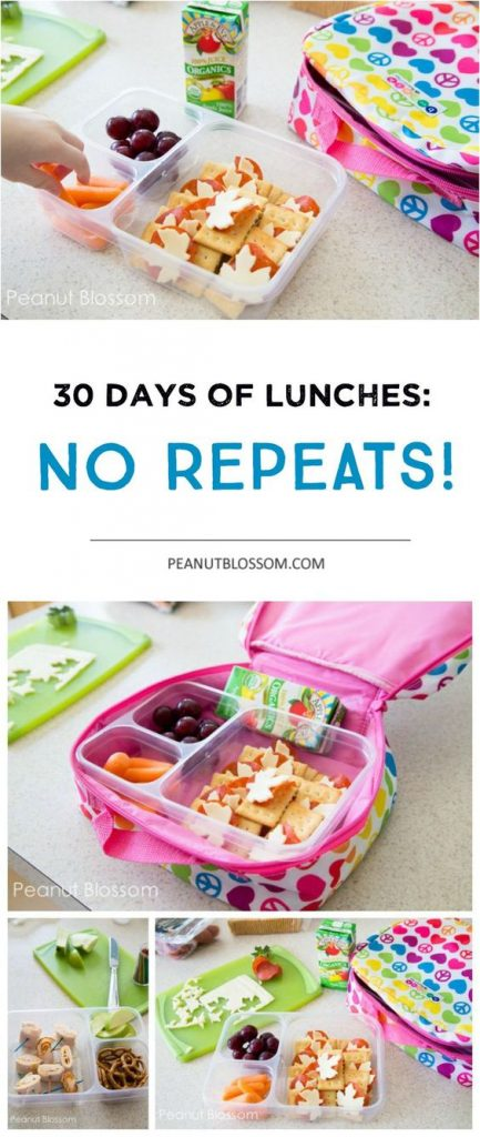 30 Days of Kids School Lunch Ideas: NO REPEATS! Pack the best lunch for your child.