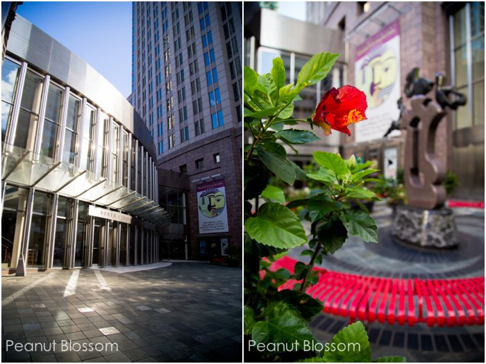 Photo walk in Charlotte, NC | Peanut Blossom