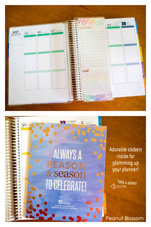 Take a peek inside the Erin Condren planner.