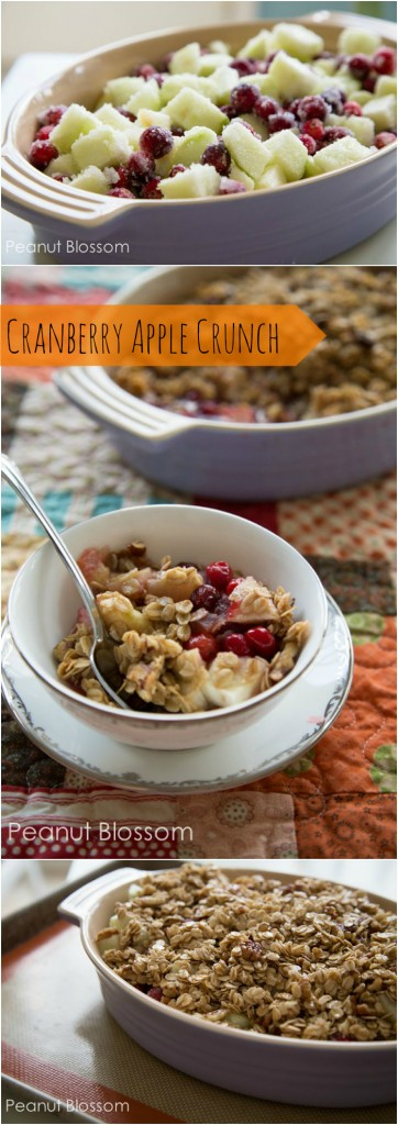 Cranberry apple crunch crisp