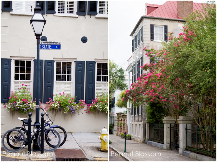 What to see in Charleston, SC | Peanut Blossom
