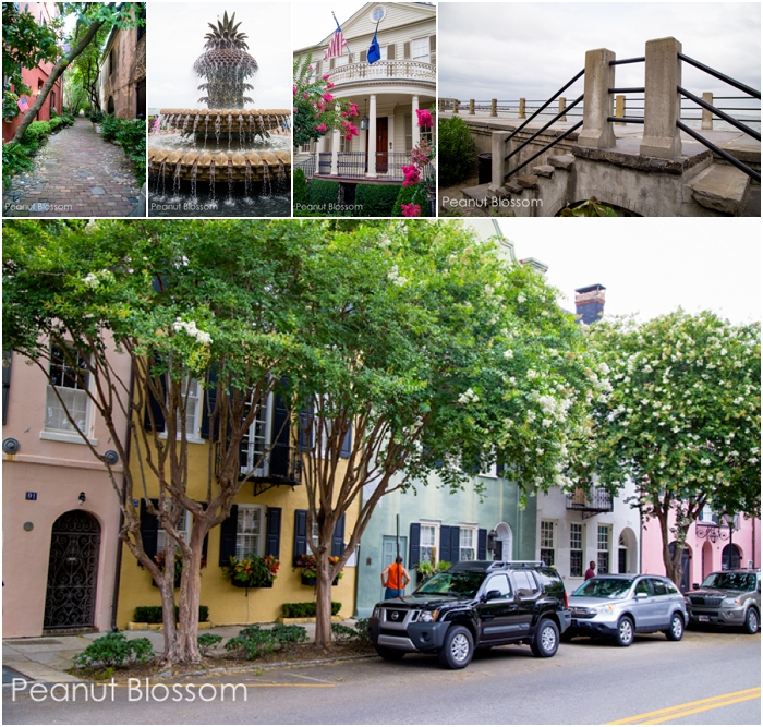 Romantic weekend getaway in Charleston, SC | Peanut Blossom