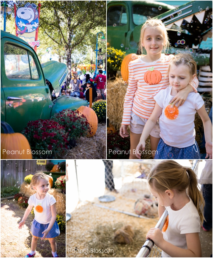 Carowinds Great Pumpkin: The perfect way to spend a fall day in Charlotte, NC