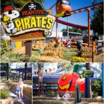 Is Carowinds Charlotte a good spot to take young kids?