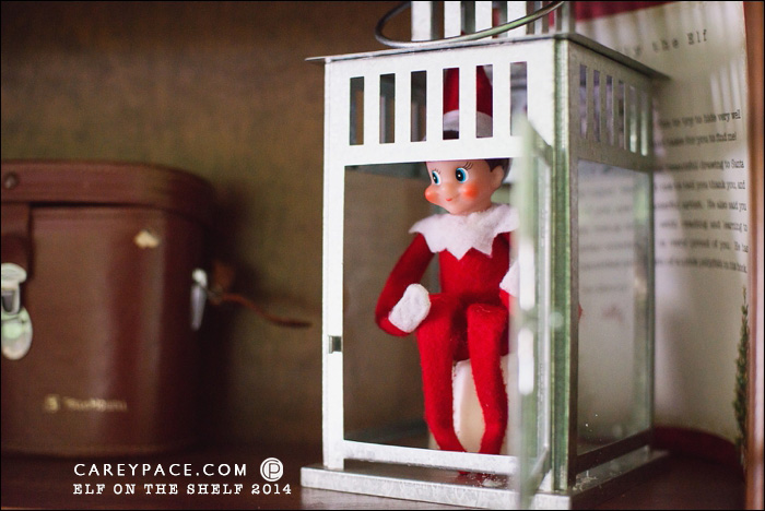 Elf on the Shelf hides in Lantern by Carey Pace