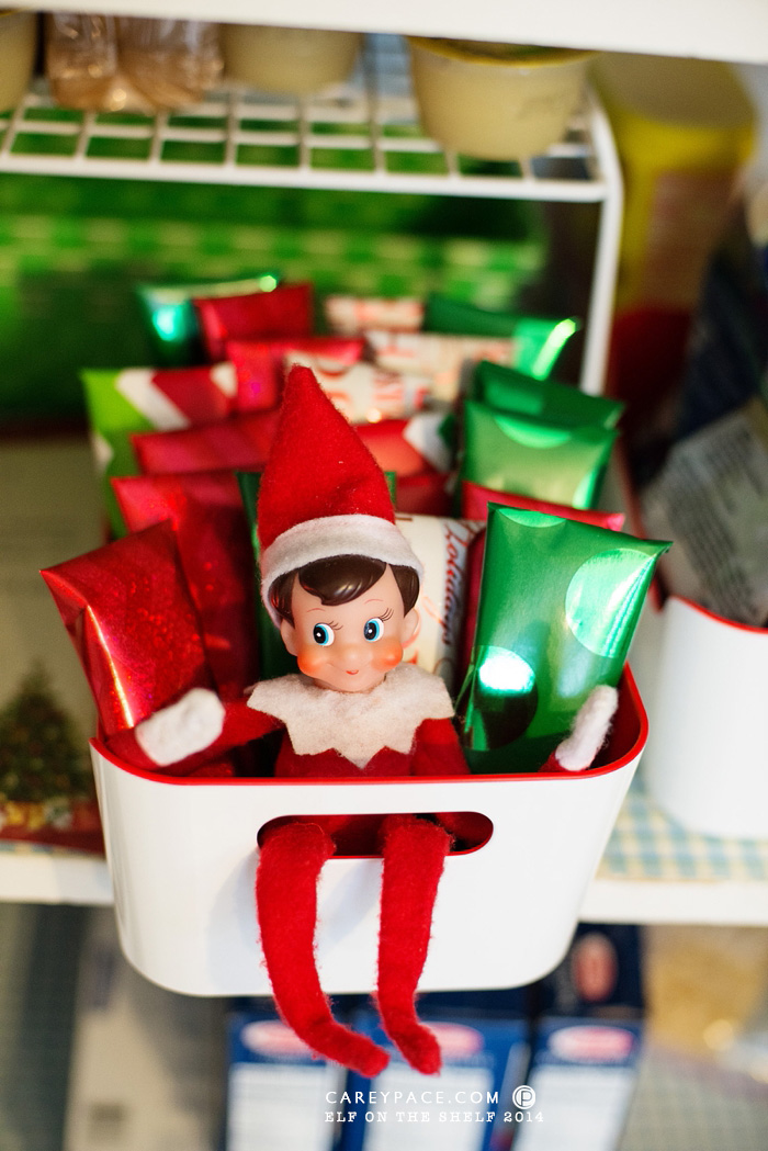 Elf on the Shelf wraps cereal bars by Carey Pace