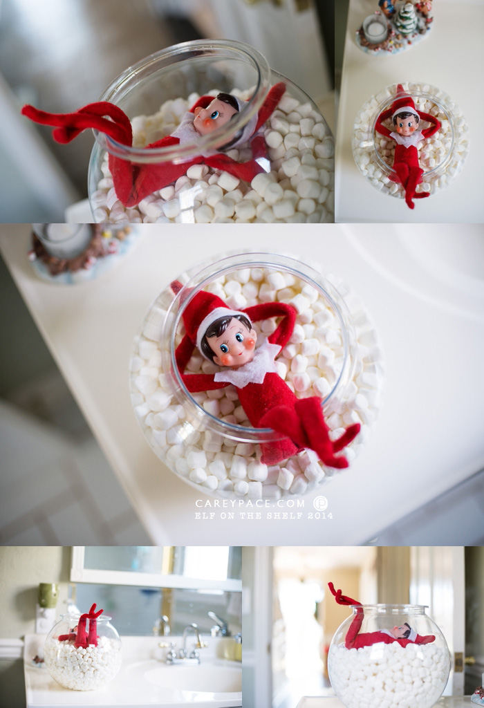 Fish Bowl Marshmallow Bath for Elf on the Shelf by Carey Pace