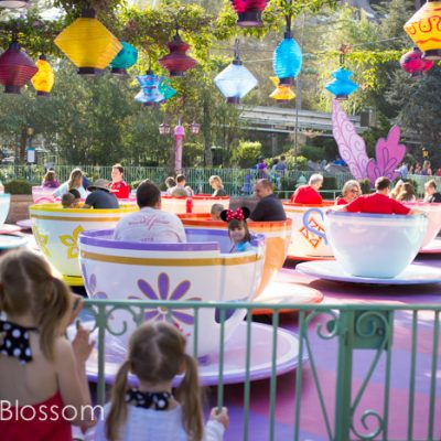 Slowing down: 10 steps to your Best Disney Vacation Ever!