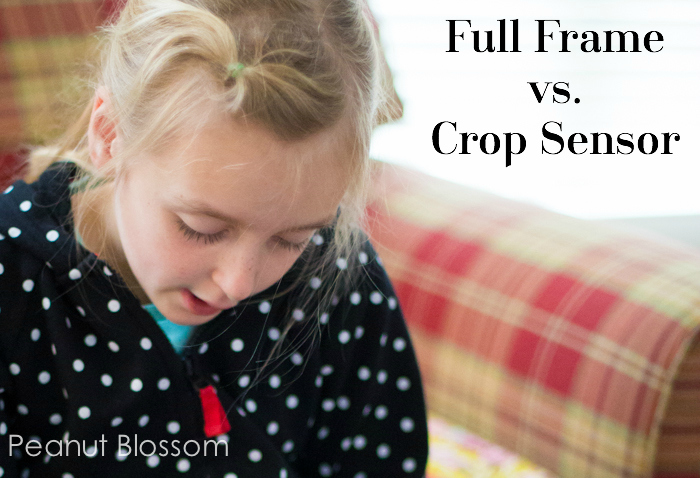 Full frame vs. crop sensor review