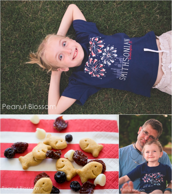 Red White and Blue American Summer Snackmix