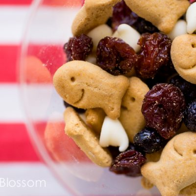 All American Summer: red white and blue party snacks
