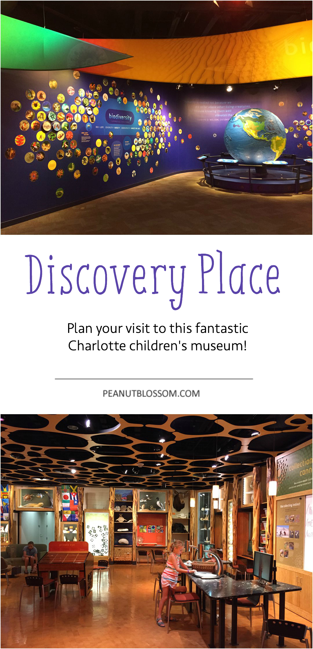 Plan a visit to Discovery Place in Charlotte, NC