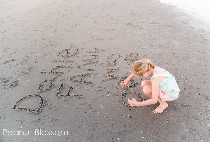 Capturing the details: easy beach photography ideas