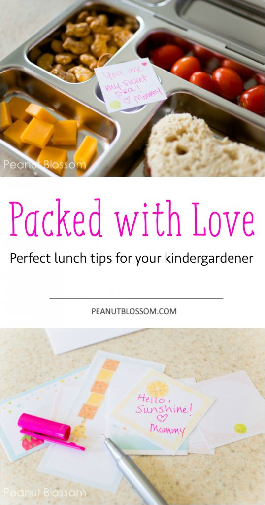 Perfect lunch packing ideas for kindergarteners