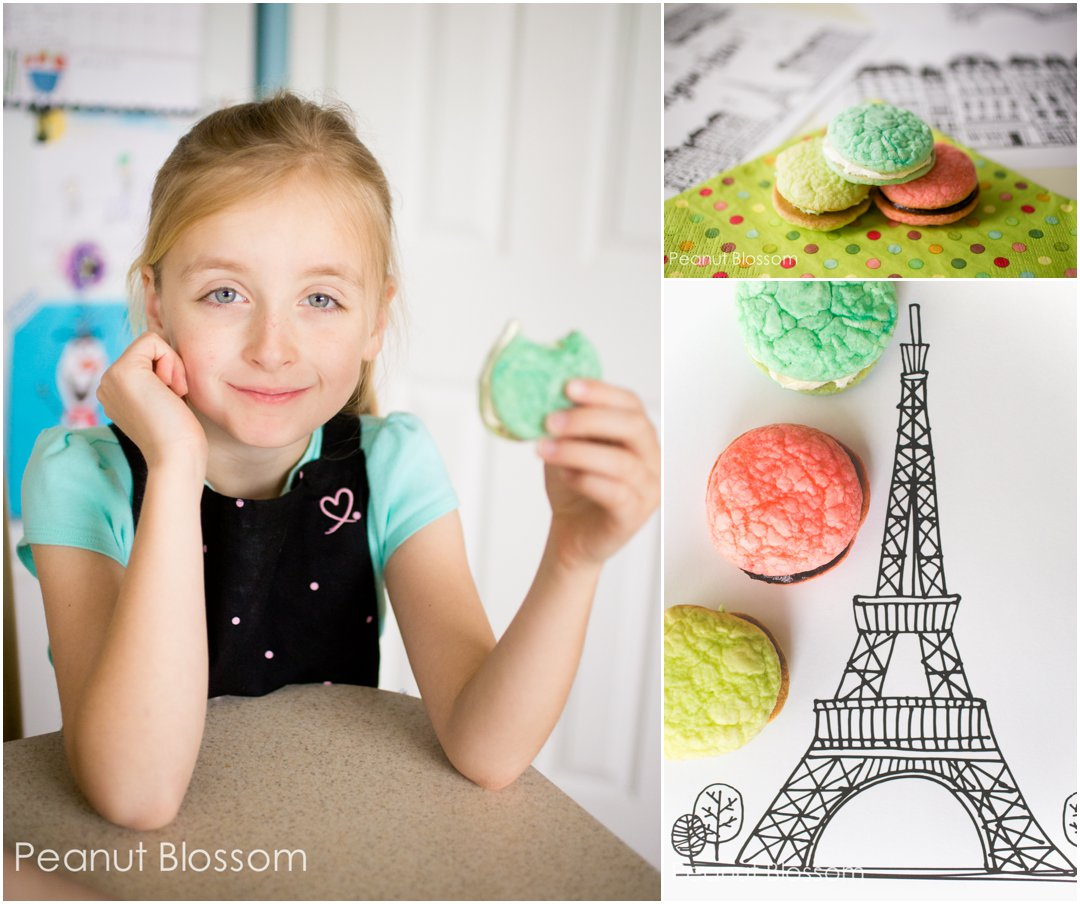 Sweet Trio Of Macarons For Your American Girl Grace Fan