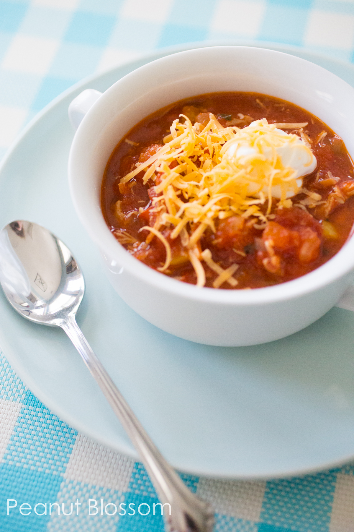 Homemade chicken chili: tons of veggies but NO beans! Only 3 WW points per serving.