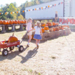 Fun Halloween Activities for Families
