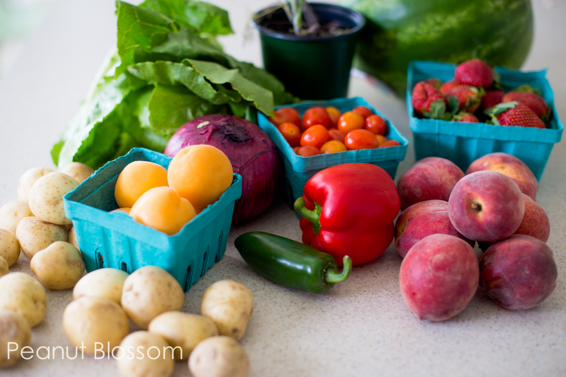30 Days of Veggies: baby steps to helping picky eaters eat better