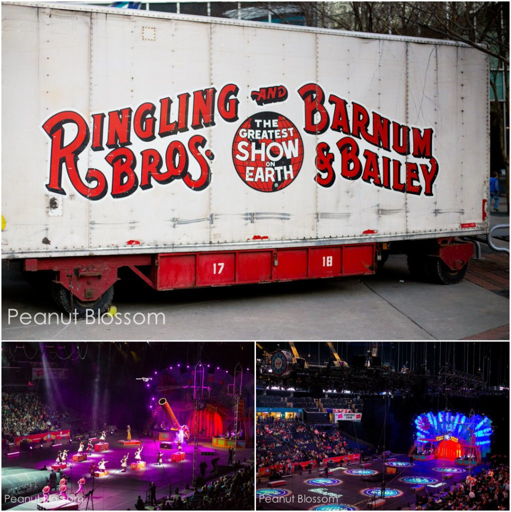 Ringling Bros. and Barnum & Bailey Circus XTreme in Charlotte, NC