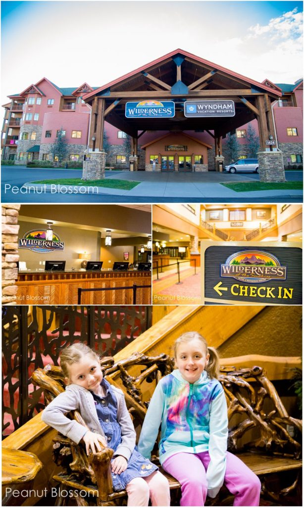 Wilderness at the Smokies: an indoor watermark resort for families in Sevierville, TN