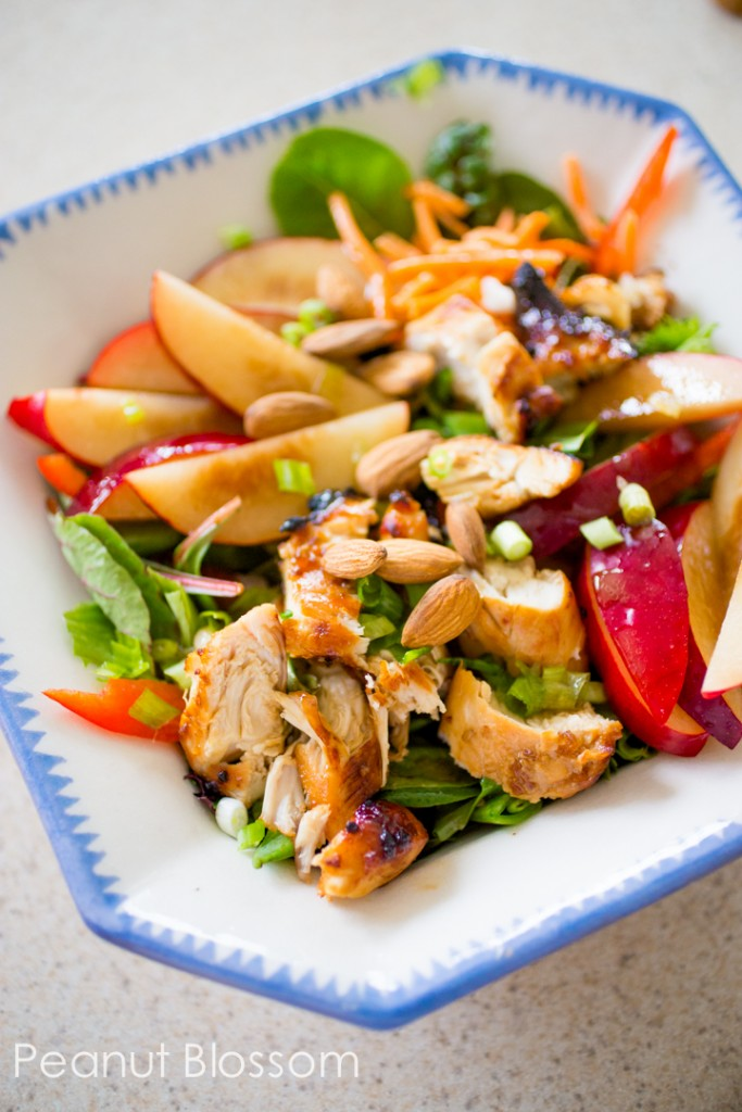 Asian vinaigrette for chicken salad with plums and almonds ...