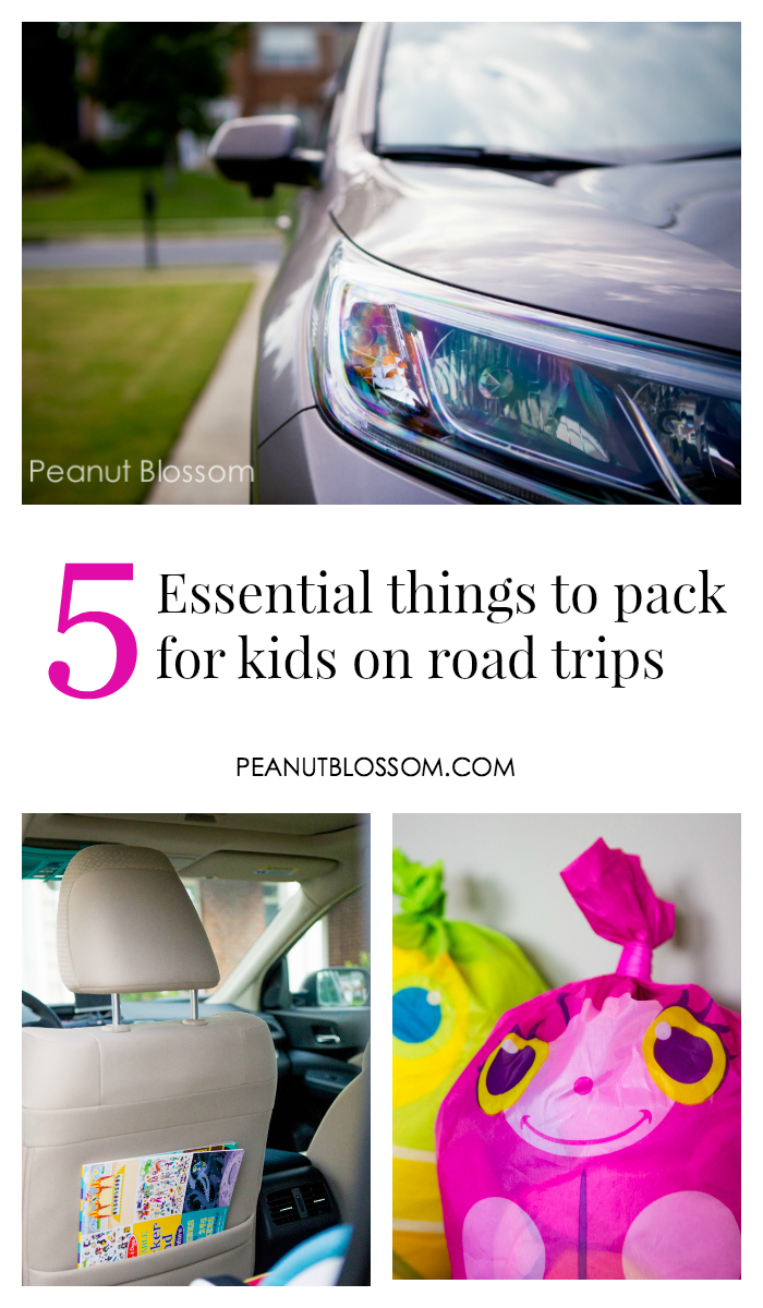 5 essential things to pack for kids on road trips