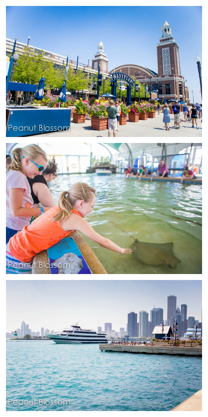 Save money on family vacations in Chicago