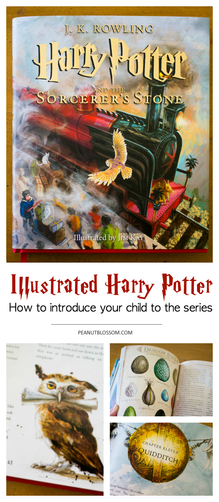 What is the perfect Harry Potter age for introducing the books? The Illustrated Harry Potter is the perfect way to start.