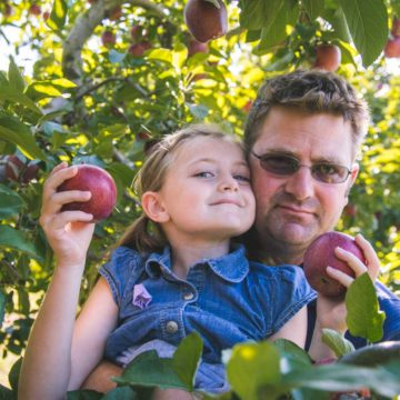 A girl and her dad are picking apples at an orchard.