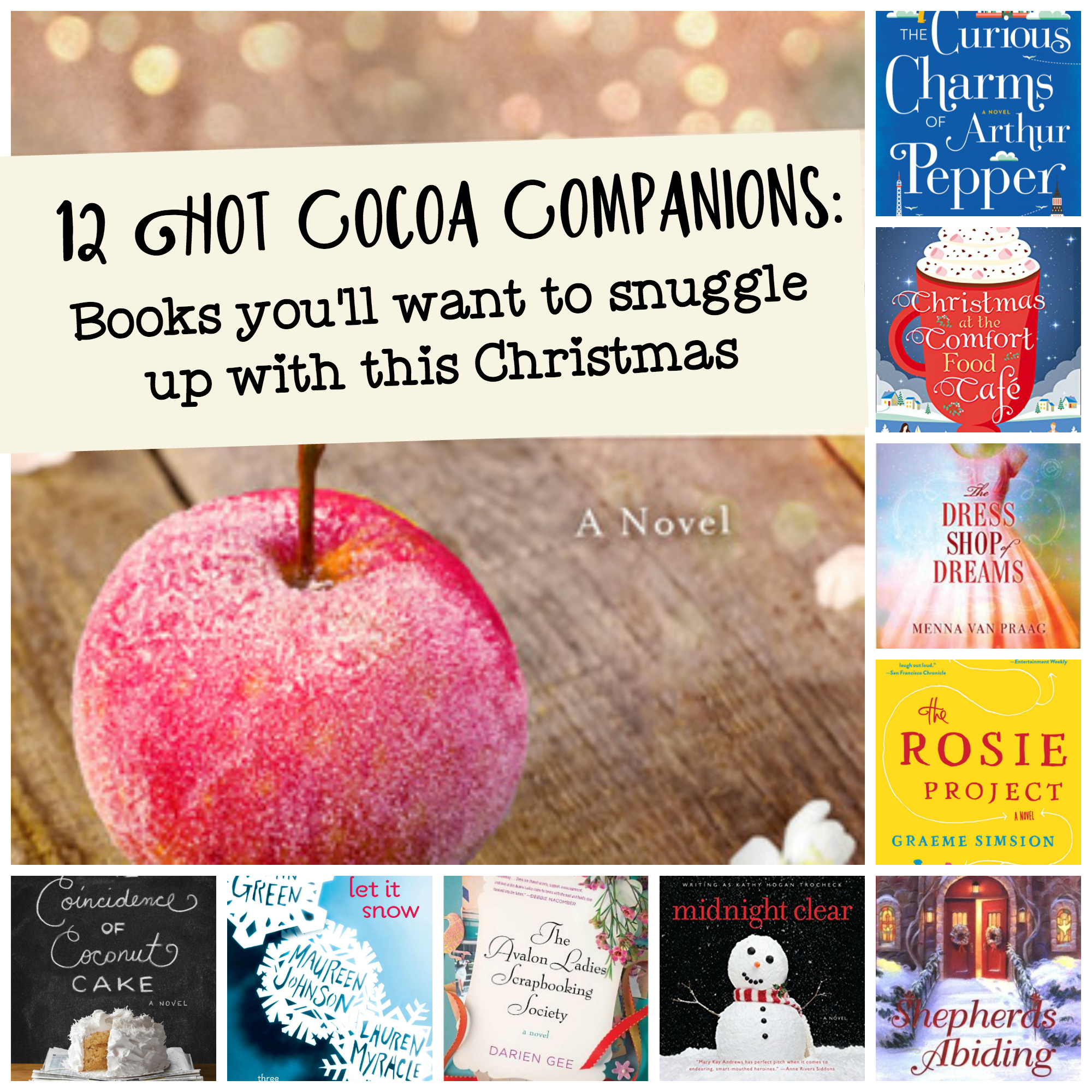 12 books you'll want to snuggle up with this Christmas