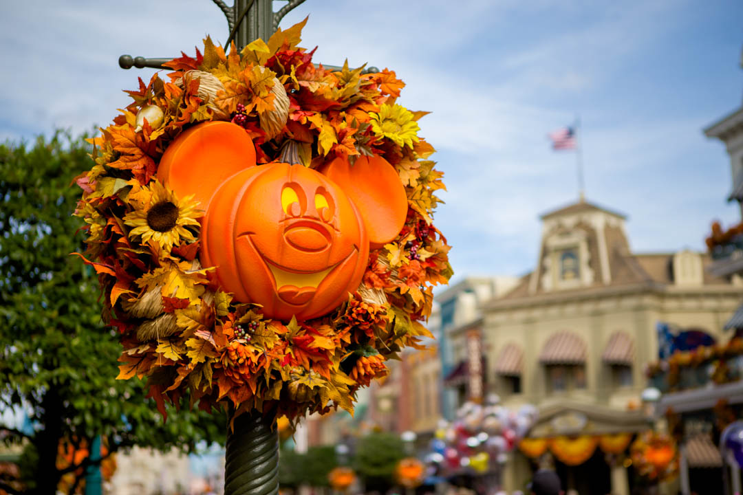 Boo to You!: Mickey's Not So Scary Halloween Party tips