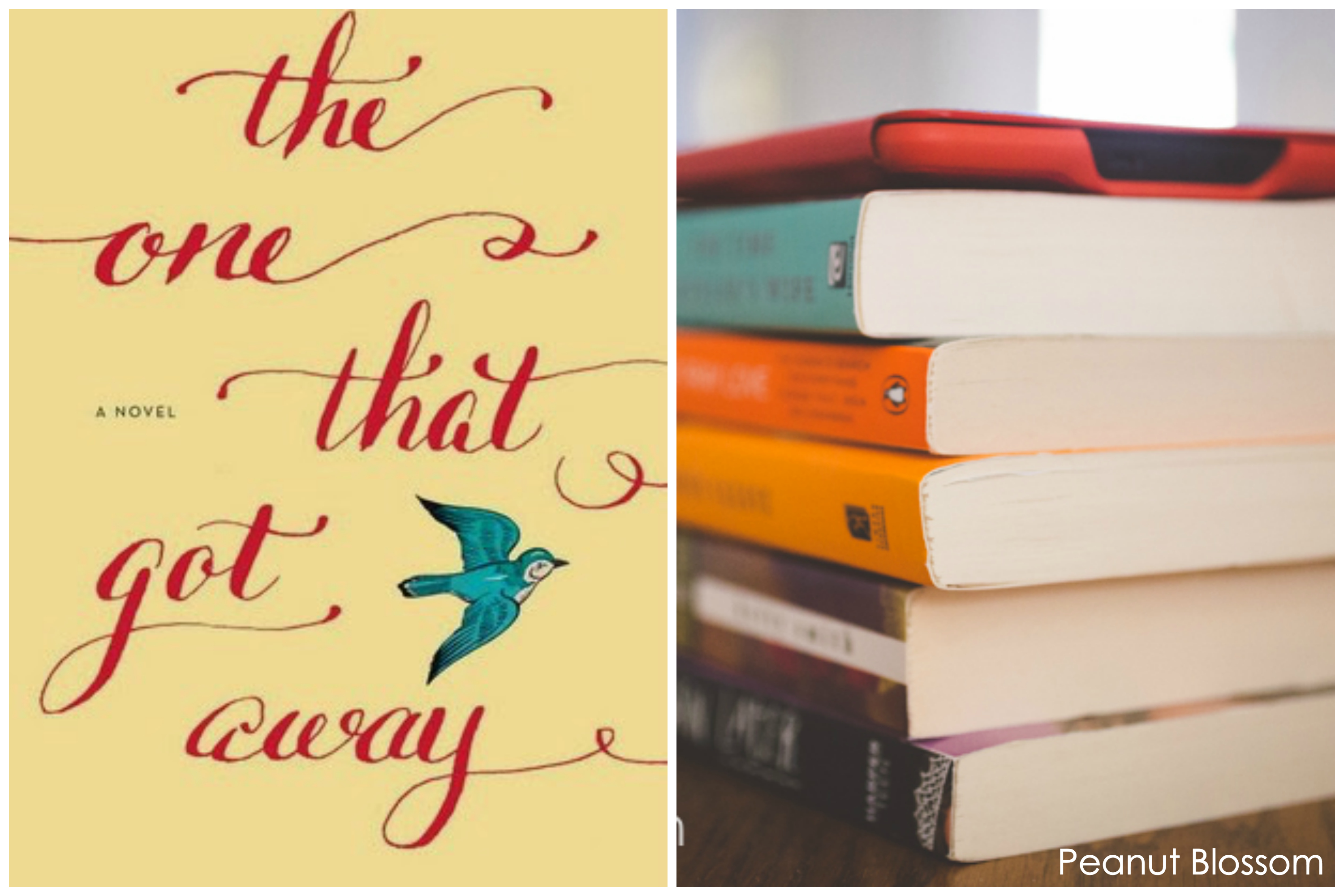 Book club discussion guide The One That Got Away by Bethany Chase