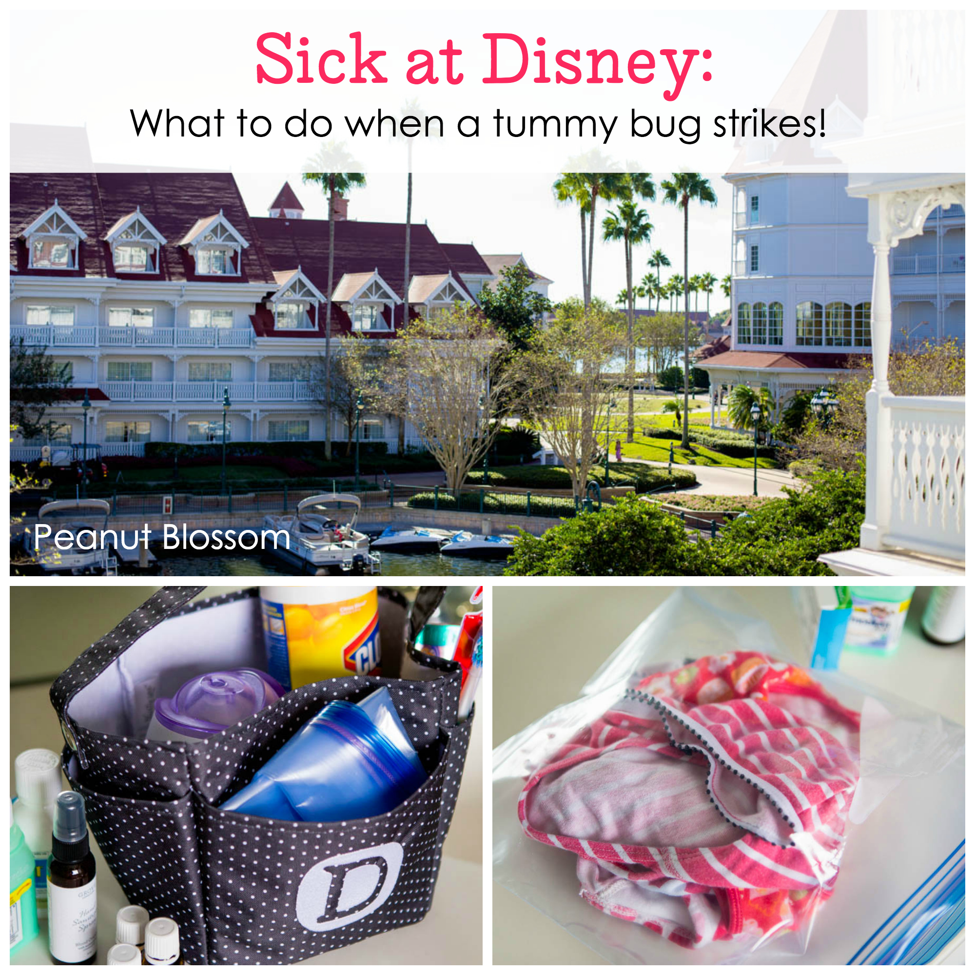 What to do with kids sick at disney