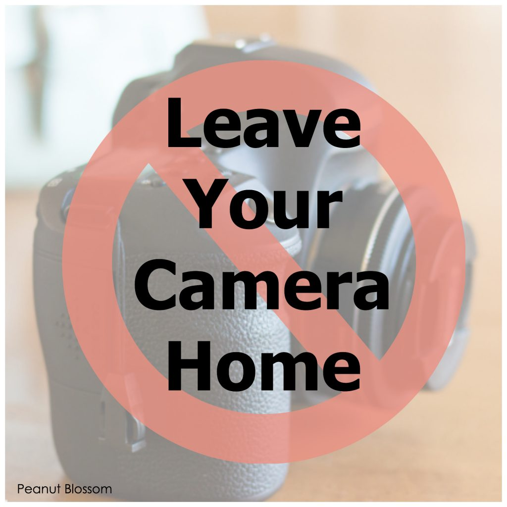 When to leave your camera home