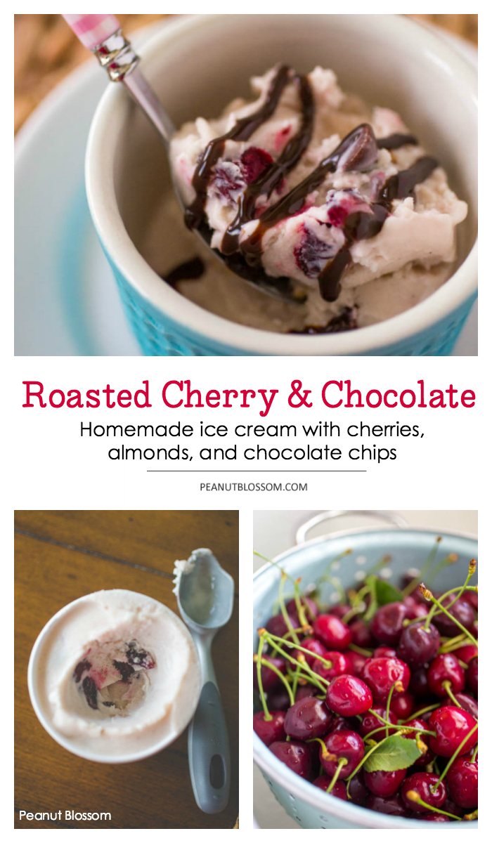 Roasted cherry ice cream with almonds and chocolate chips
