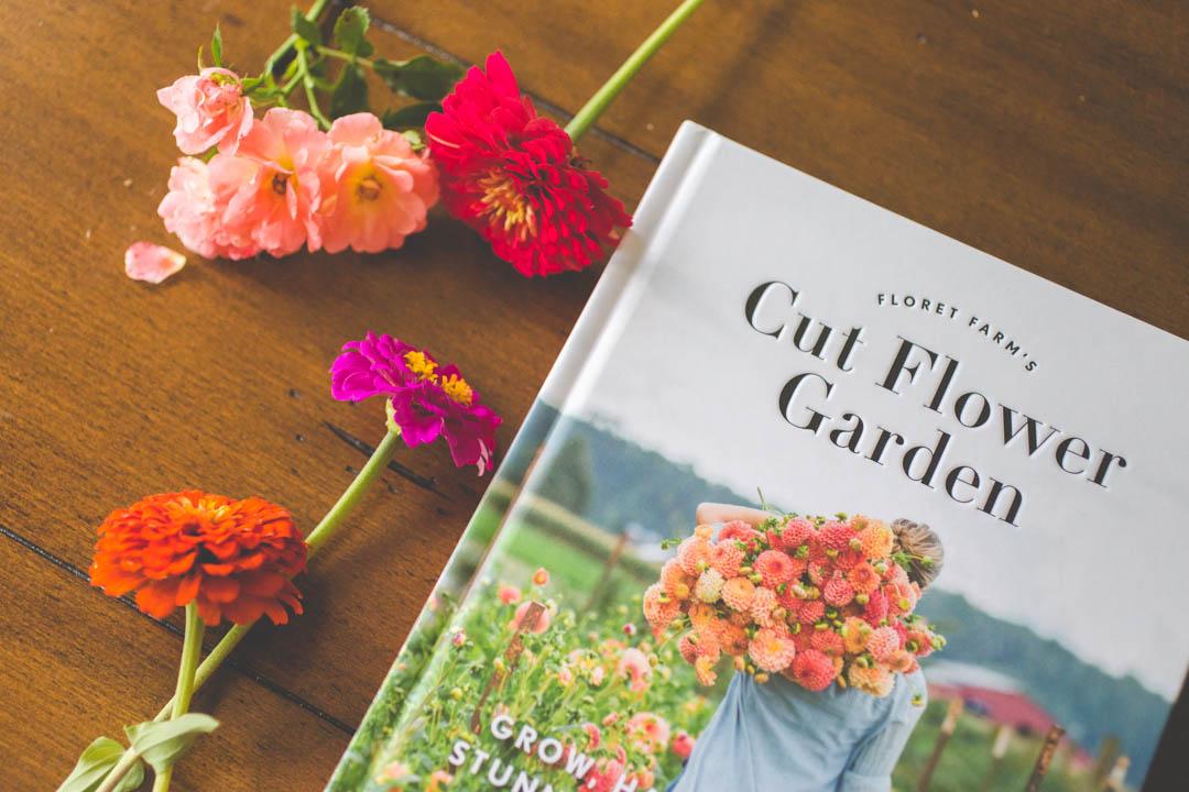 How to set up a cut flower garden for beginners