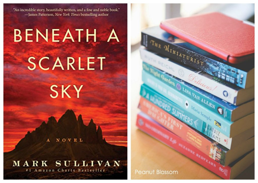 Beneath A Scarlet Sky book club questions