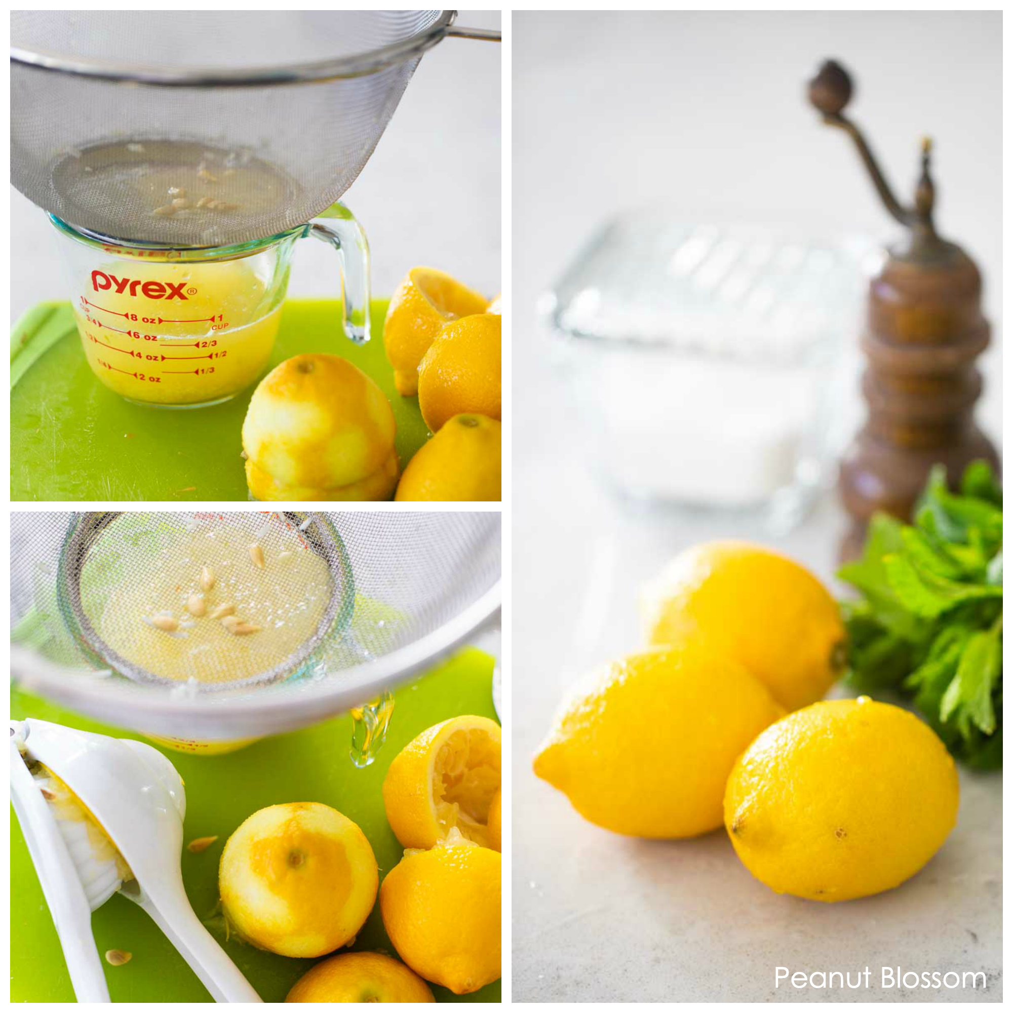Collect the seeds from fresh lemons by squeezing them over a strainer.