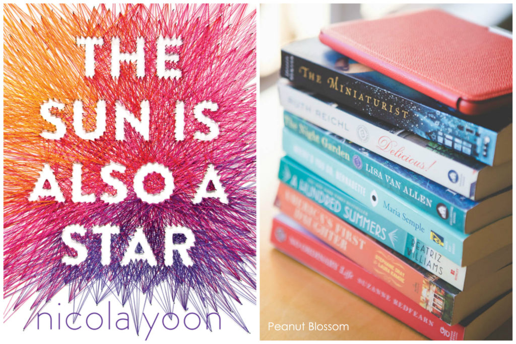 The Sun Is Also a Star: the perfect way to revive your book club