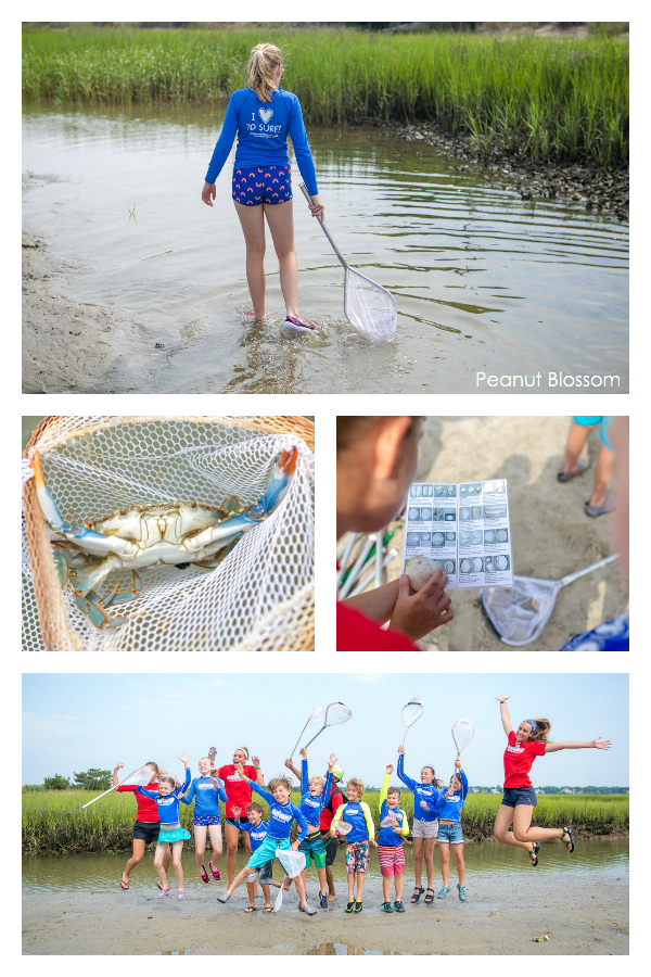 Kids learn how to catch crabs at surf camp in Wrightsville Beach NC