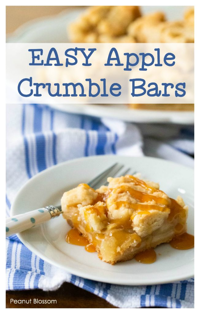 Apple crumble topping for easy apple pie bars. These are the perfect Thanksgiving treat.