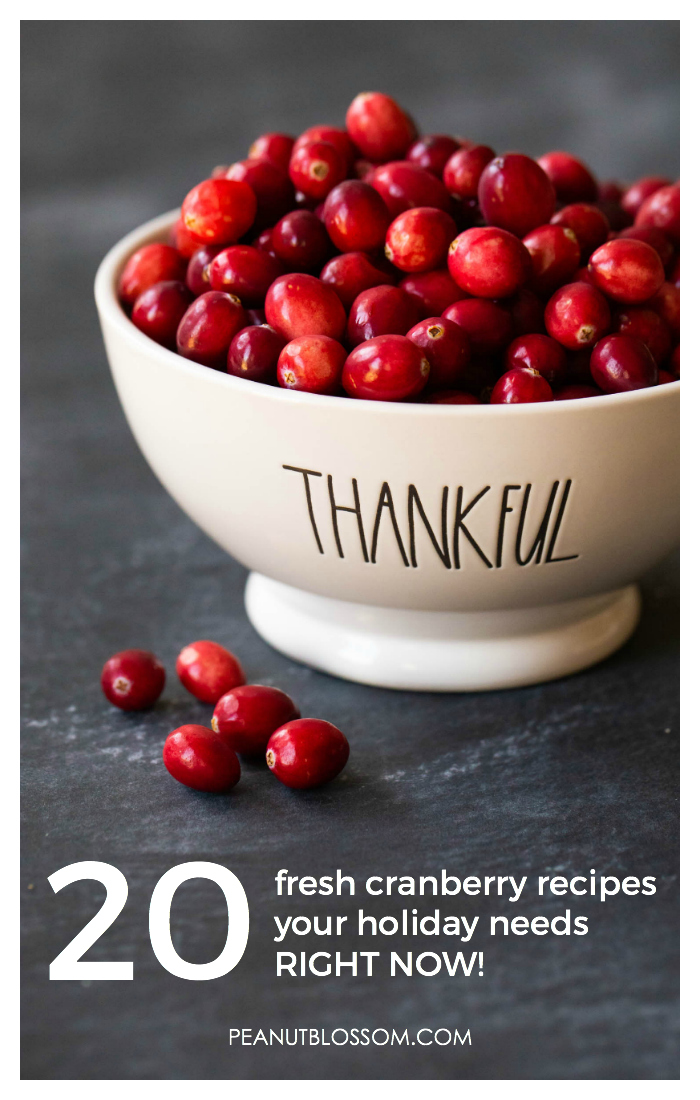 20 fresh cranberry recipes for Thanksgiving or Christmas