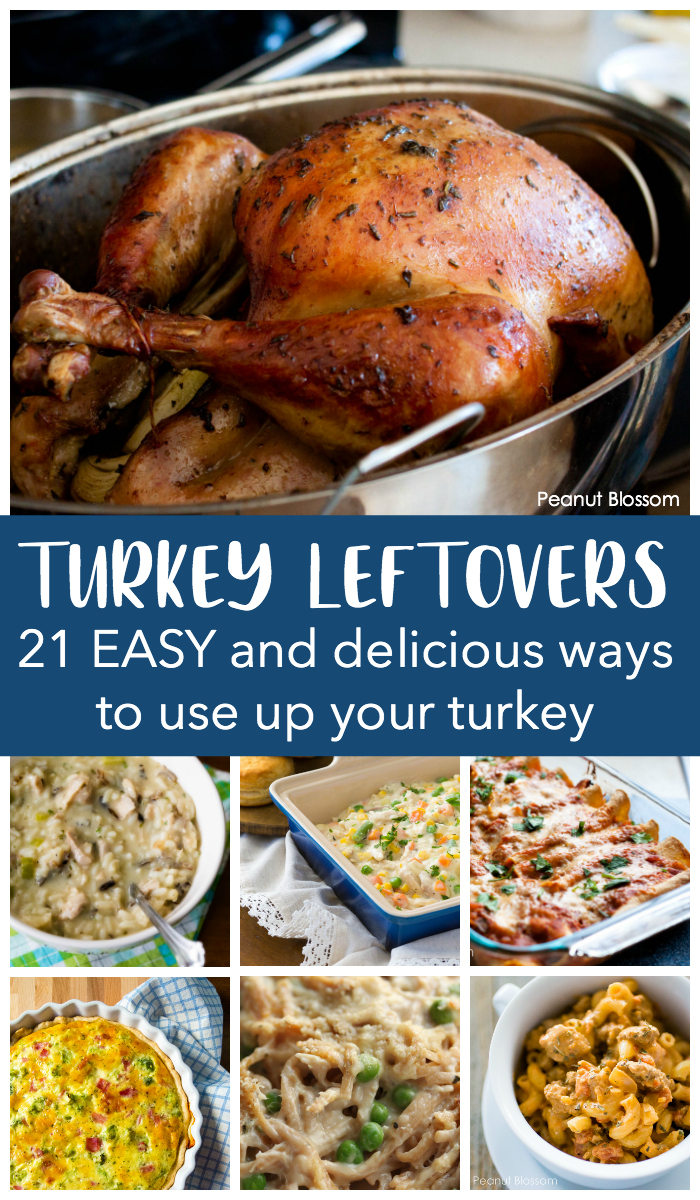 21 easy leftover turkey ideas for after the Thanksgiving and Christmas feast.