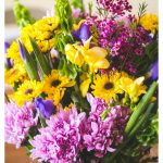How to pick the prettiest Trader Joe's flowers for just $20